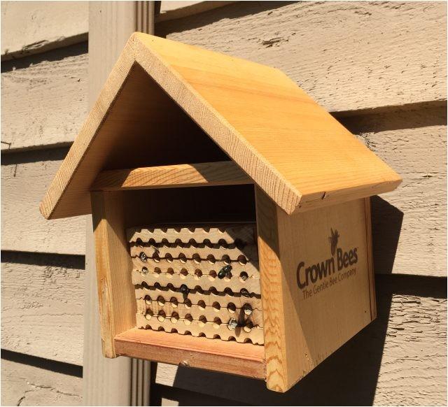 Mason Bee House Plans Bamboo Mason Bee House Plans 1 Visualize See Nest Hive Kartalbeton