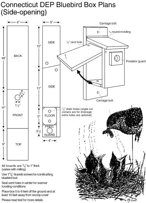 bluebird house plans hole size