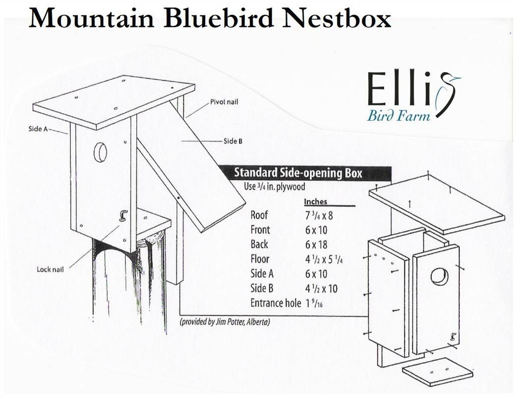 nestboxes