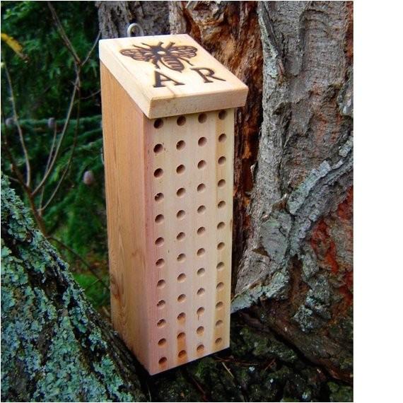 mason bee box blue orchard bee house