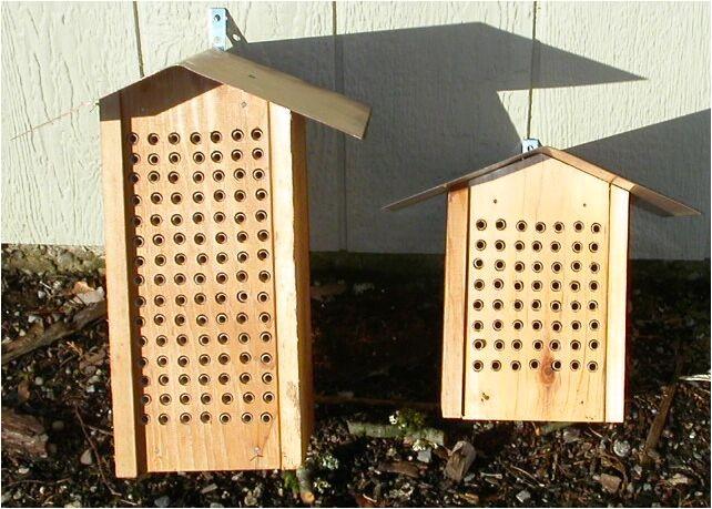 mason bee house designs