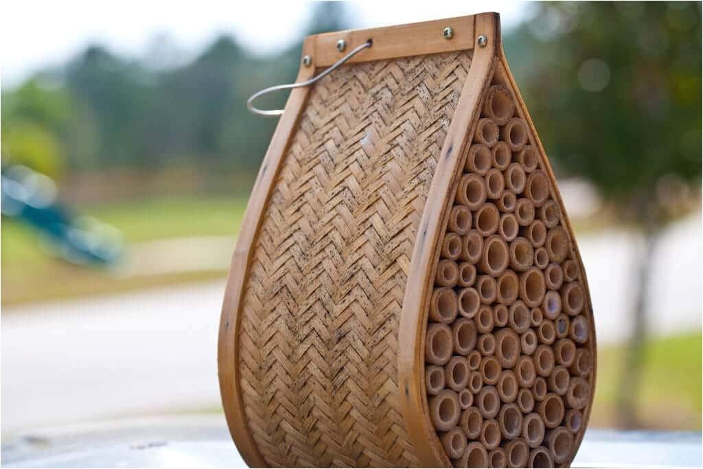 orchard mason bee house plans