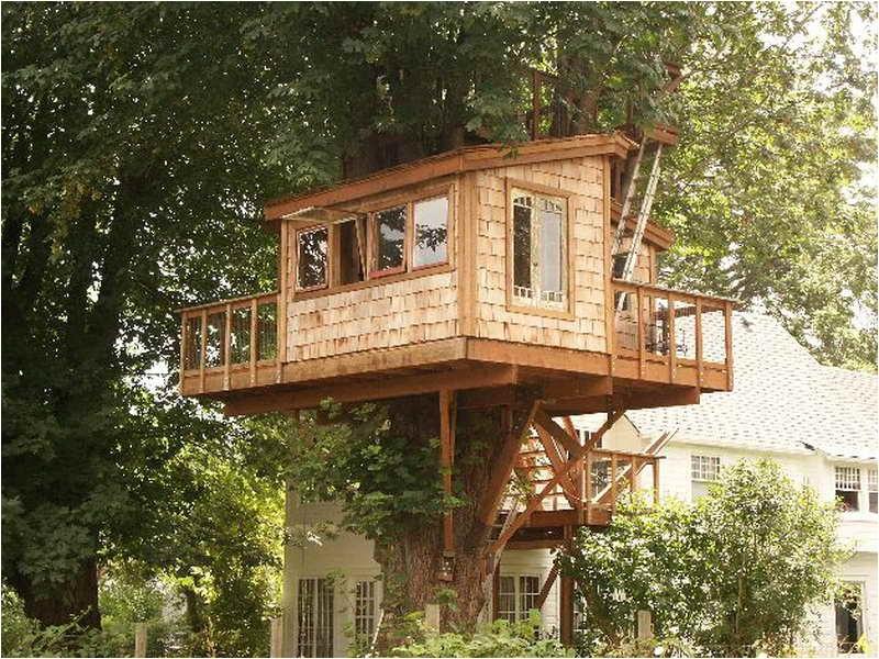 fantastic treehouse plans