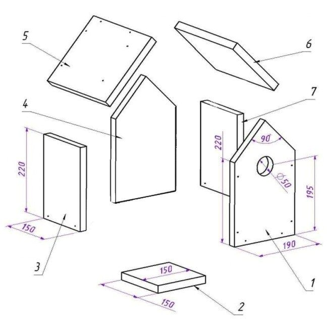 bird house plans for robins