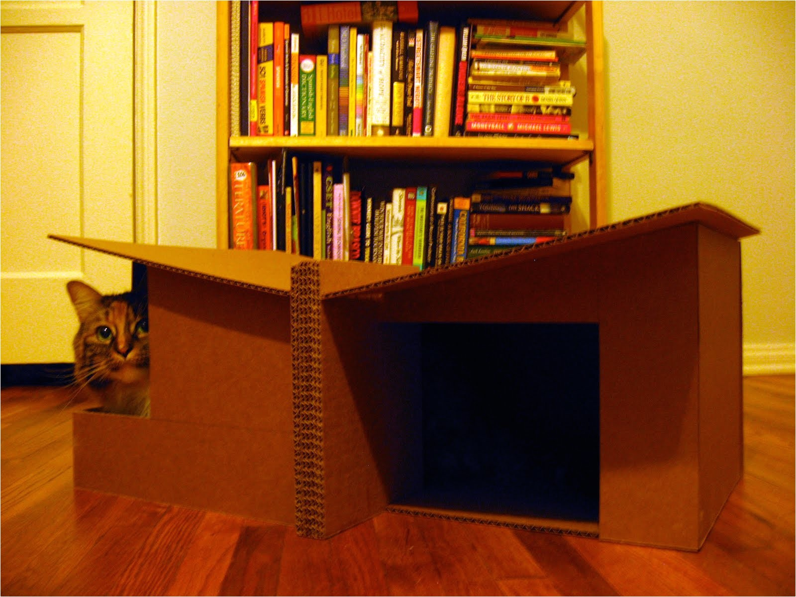 pdf diy cardboard cat house plans download canoe bookcase plans