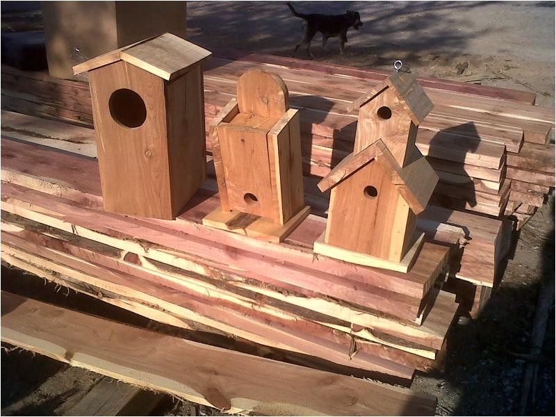 bird house plans cedar how to making woodwork pdf download