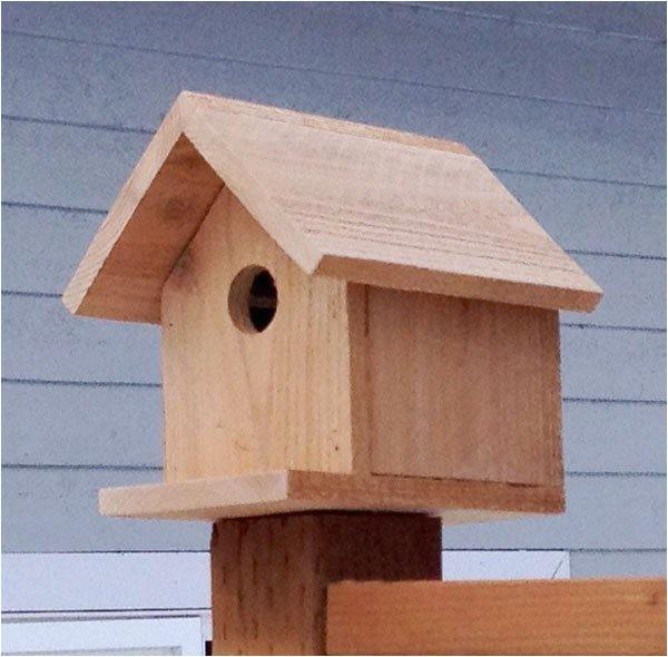 cedar bird house plans