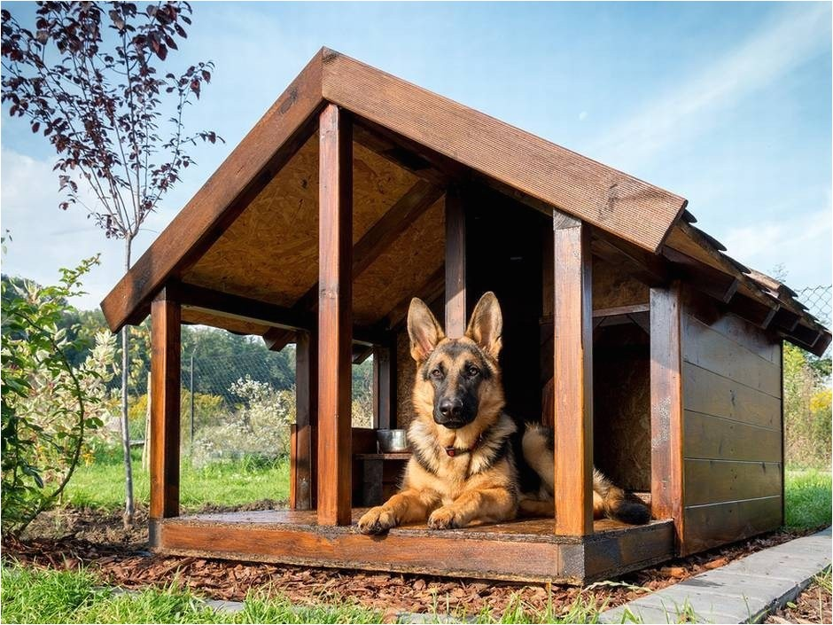 dog house plans with hinged roof luxury dog house plans with hinged roof google search