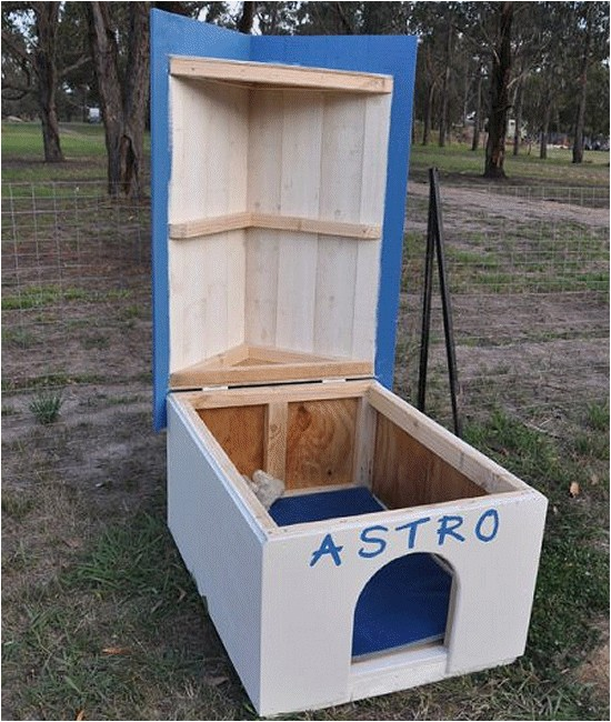 photo doghouse astro 3