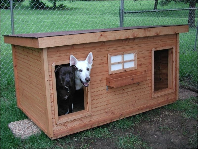 duplex dog house home design garden architecture blog magazine