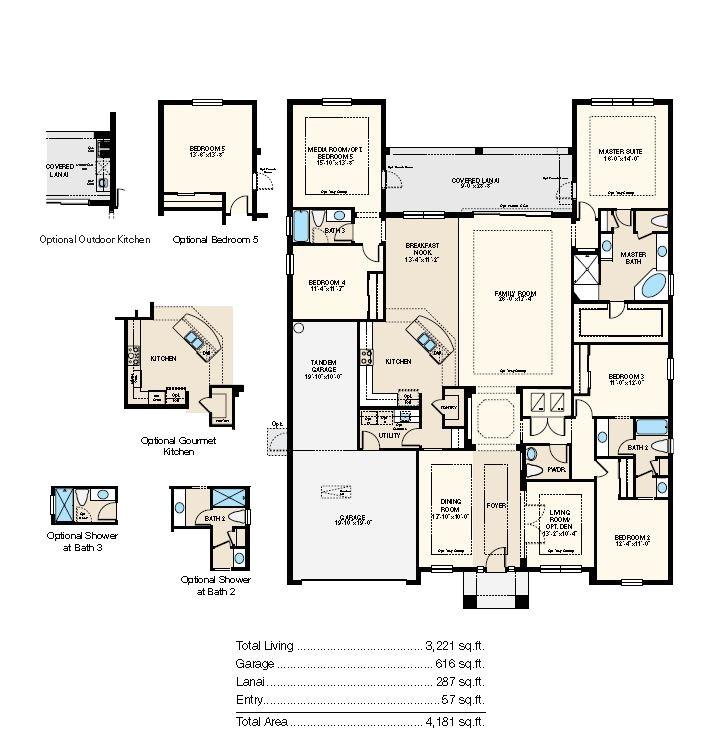 First Home Builders Of Florida Floor Plans Windover Iii Floor Plan at Arbor Woods In Wesley Chapel