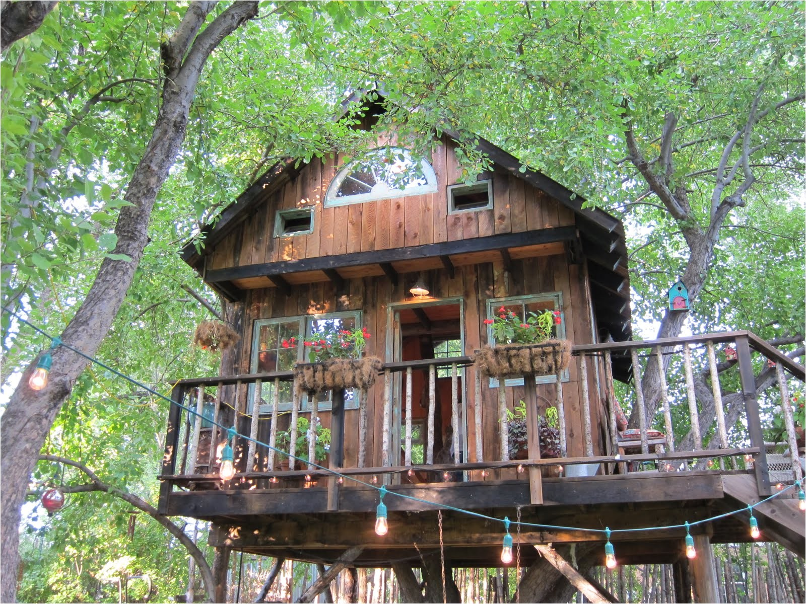 large tree houses with classy lighting design for large tree houses for sale