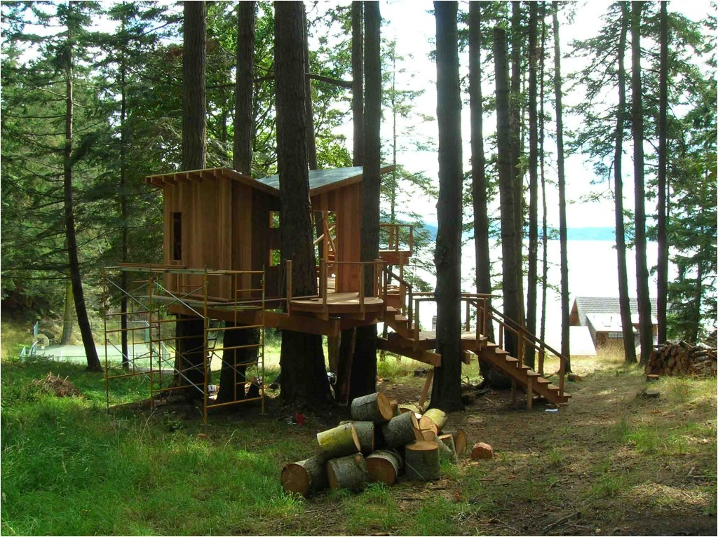 large tree houses with cool wooden tree houses on the pine tree design for amazing tree houses