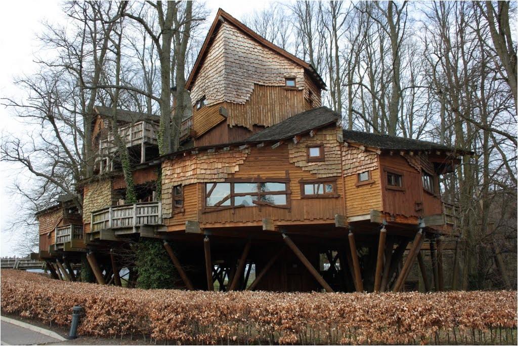tree house design ideas for modern family