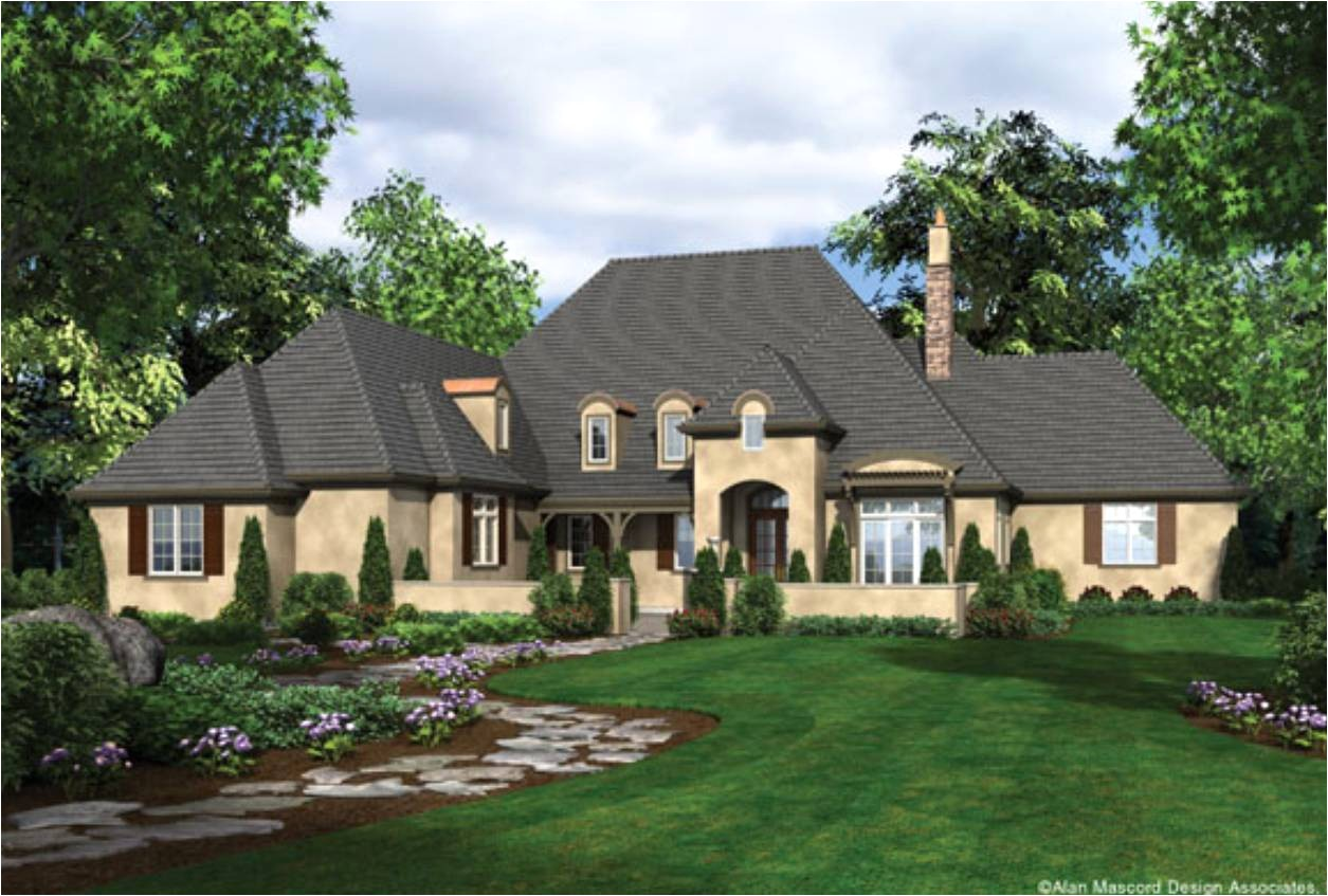 one story house plans french country