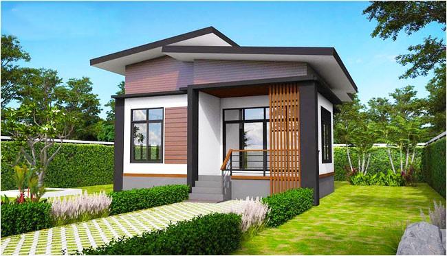 elevated modern single storey house