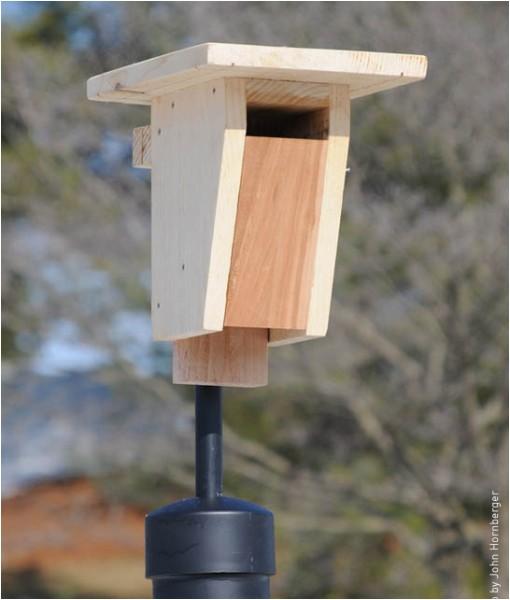 sparrow resistant bluebird box
