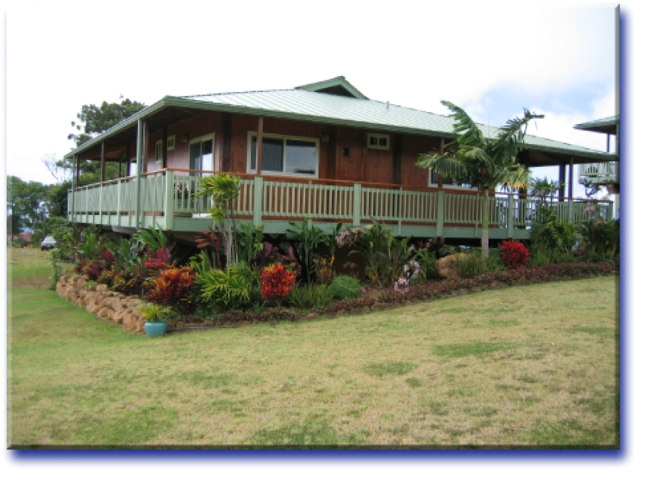 minimalist tropical house design