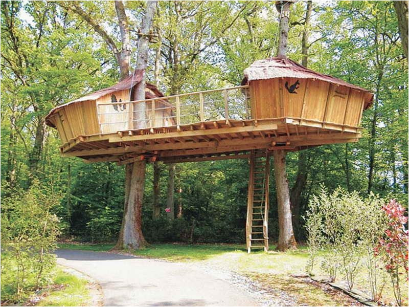 adult tree house plans best of outdoor awesome treehouse plans and designs beautiful treehouse