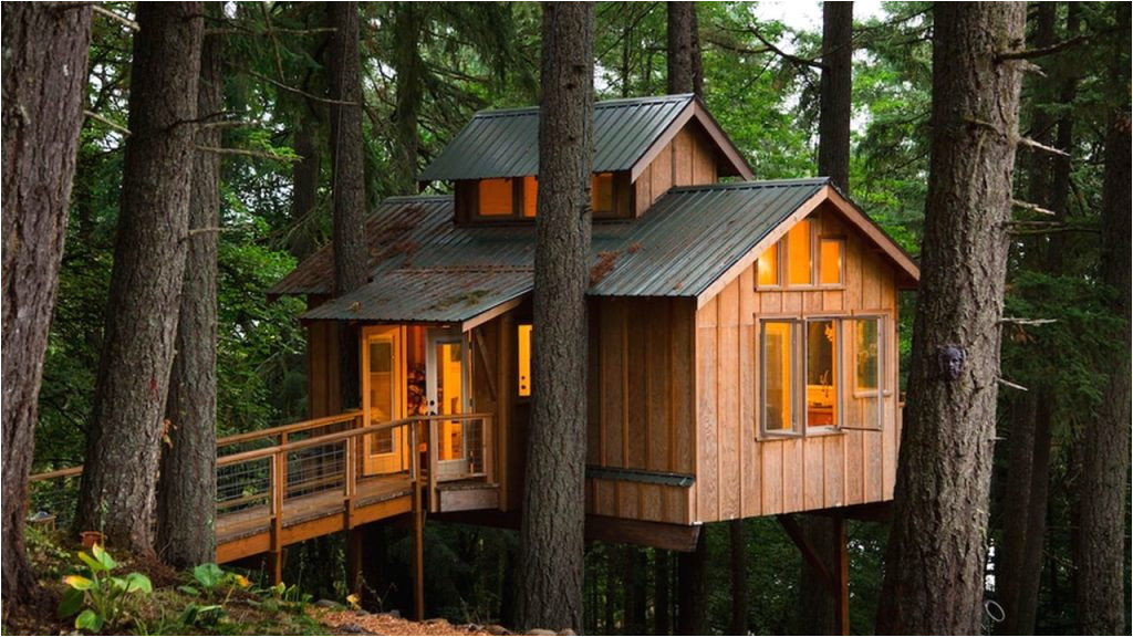 adult tree house plans new adults who live in treehouses on vimeo