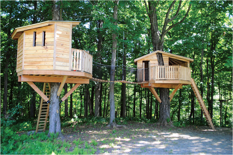 reaching new heights with adult treehouses