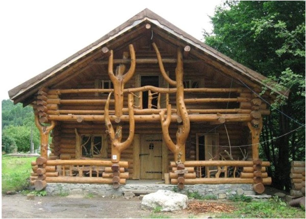 amazing log home wild design