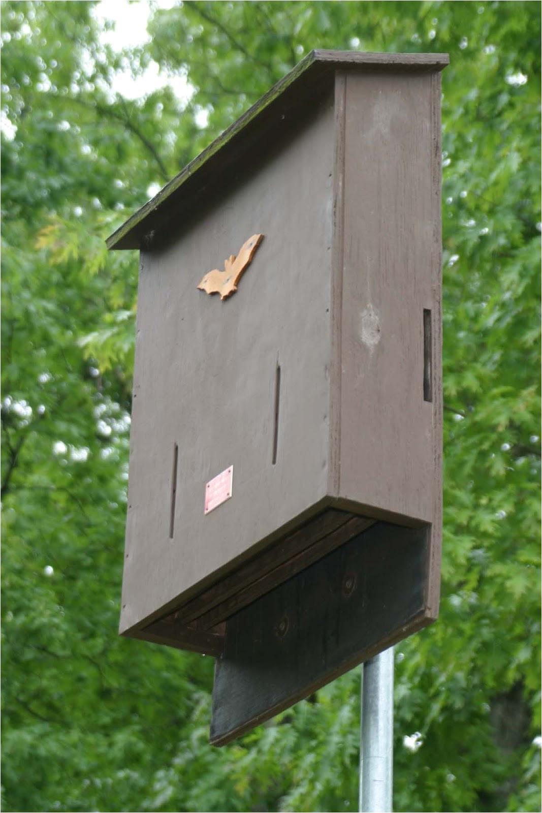 mn dnr bat house plans