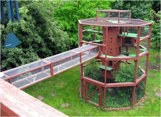 cat house outdoor plans free