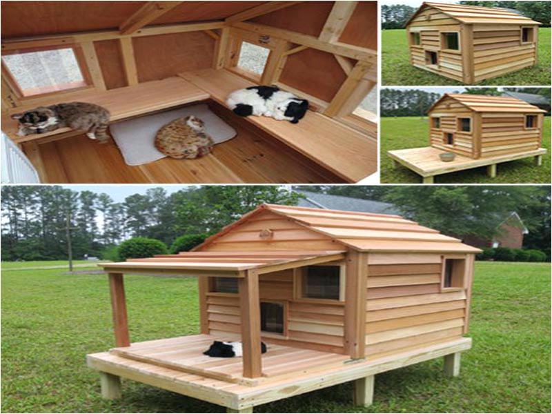 diy outdoor cat house ideas