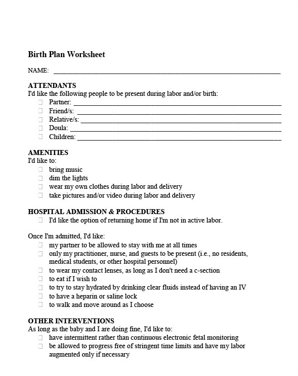 Home Birth Plan Worksheet 22 Sample Birth Plan Templates Pdf Word Apple Pages