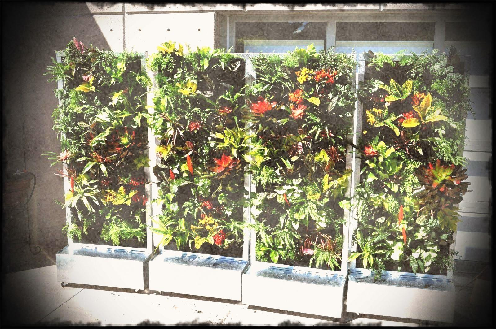 vertical wall garden kits plants on walls systems modular kit with pots irrigation included indoor vegetable archives home gardens park s wheels o 2