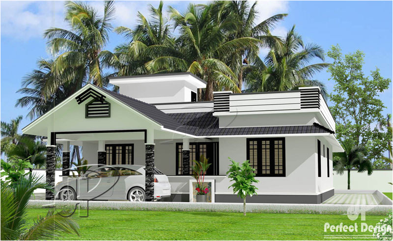 beautiful one storey home design