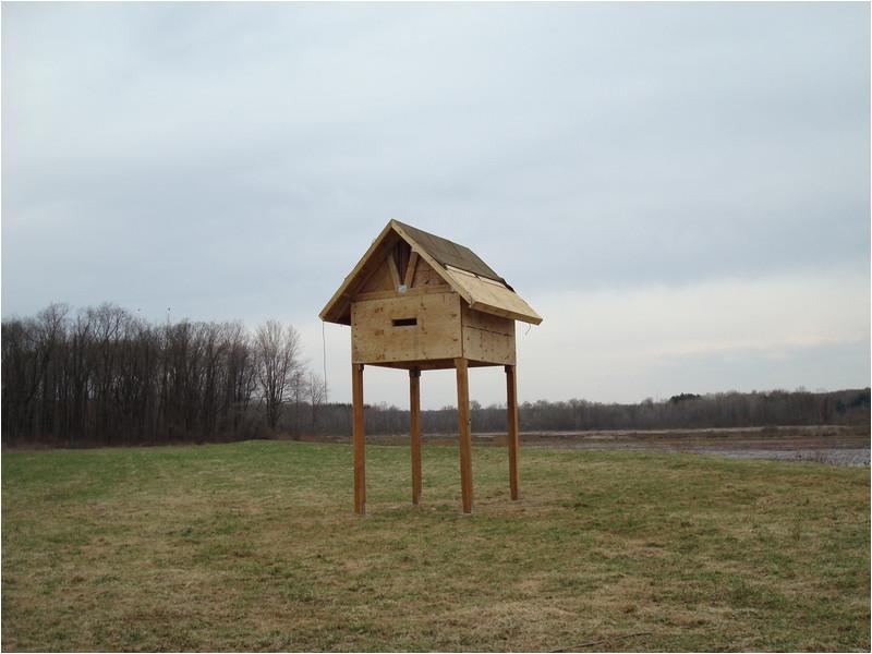 bat house plans for florida