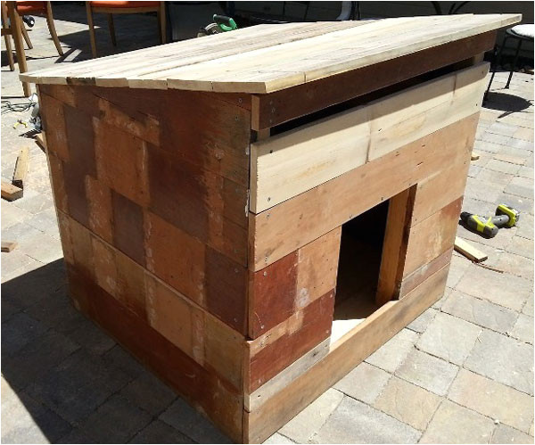 simple large dog house plans