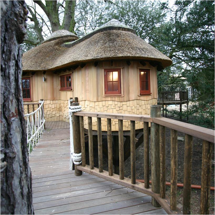 blue forest living highlife treehouse 07 10 2014