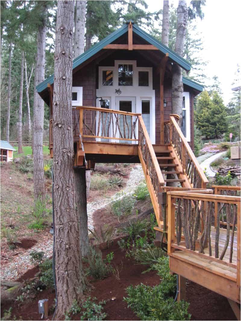 livable treehouse plans free