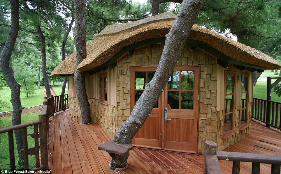 Livable Tree House Plans now that 39 S A Real Millionaire Play Pad the Luxury Tree