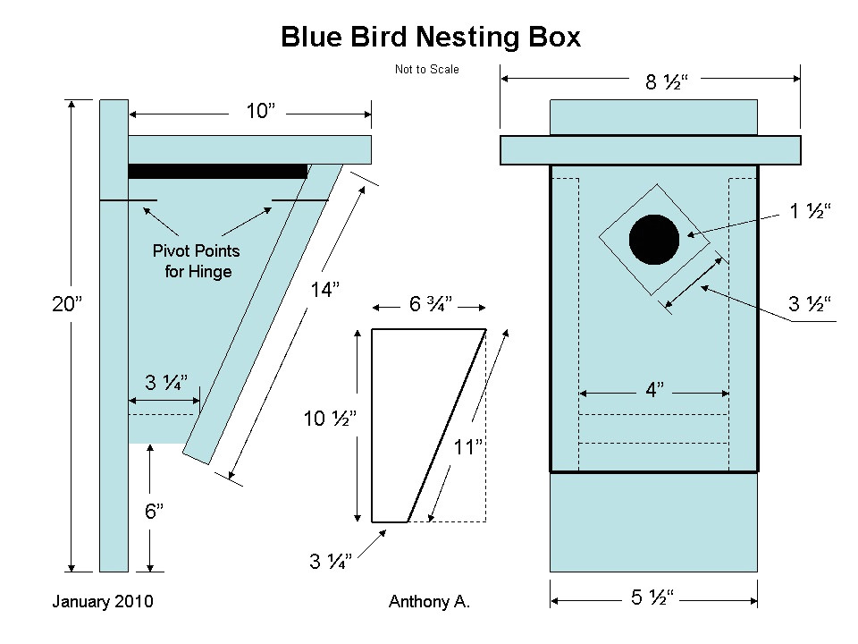 bluebird houses plans