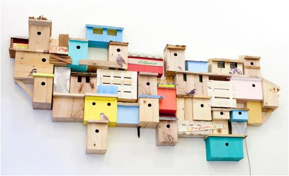 plans for sparrow bird houses