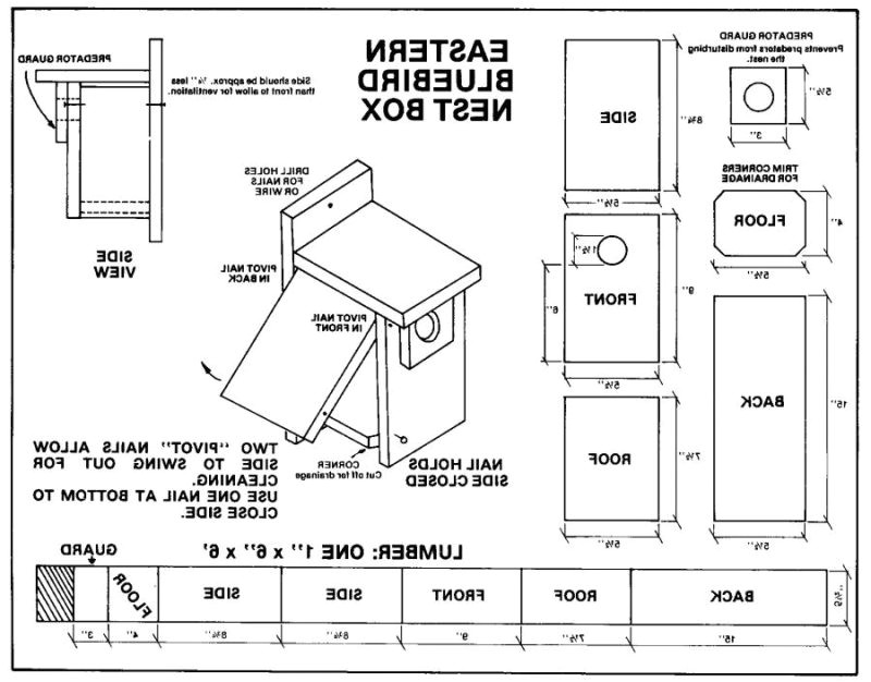 simple bluebird house plans