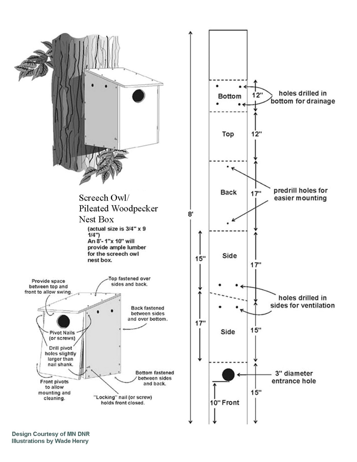 pdf plans pileated woodpecker bird house plans download amish bench plans