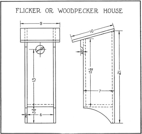 pileated woodpecker bird house plans