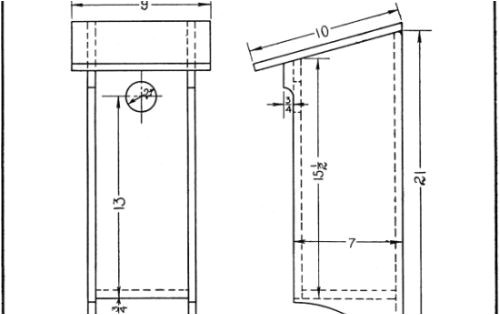 woodpecker house plans