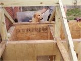 2 Room Dog House Plans Two Room Dog House Plans Fresh Meet the Winners Of the