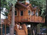 Adult Tree House Plans 67 Best Tree Houses Images On Pinterest Tree Houses