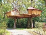 Adult Tree House Plans Adult Tree House Plans Best Of Outdoor Awesome Treehouse