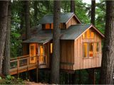 Adult Tree House Plans Adult Tree House Plans New Adults who Live In Treehouses