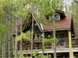 Adult Tree House Plans Ideal World Everyone Should Have An Adult Tree House