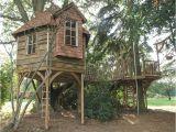 Adult Tree House Plans Over 1000 Ideer Om Huse I Traeer Pa Pinterest Trae Huse