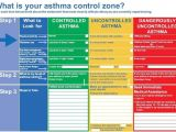 Asthma Home Management Plan Of Care 72 Best Images About asthma Sucks On Pinterest Seasonal